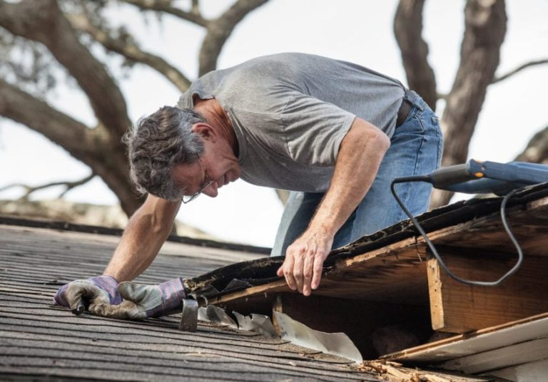 What are some precautions that can extend the life of your Roof?